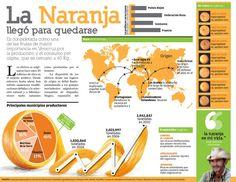 Pasión por Ilustración: Fotos del curso de infografia PRO en Querétaro
