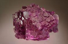 Fluorite Berbes Mine, Ribadesella, Asturias Prov., Spain 6.0 x 7.5 cm. (Author: crosstimber)