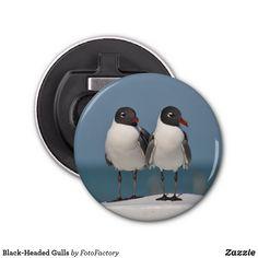 Black-Headed Gulls Bottle Opener