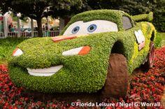 2014 Flower & Garden Festival