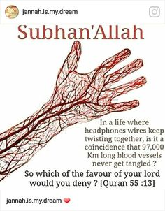 Be inspired with Allah Quotes about life, love and being thankful to Him for His blessings & mercy. See more ideas for Islam, Quran and Muslim Quotes. Islamic Qoutes, Islamic Teachings, Islamic Messages, Islamic Inspirational Quotes, Muslim Quotes, Religious Quotes, Hijab Quotes, Islamic Phrases, Islamic Dua