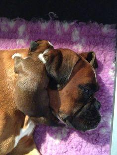 Dormindo com a mamãe coisa mais doce ♥