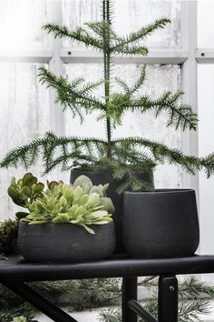 Simple black and green holiday decorating for those who prefer subtle christmas decor