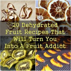 20 Dehydrated Fruit Recipes That Will Turn You Into A Fruit Addict - Obst Dehydrated Vegetables, Dehydrated Food, Raw Food Recipes, Gourmet Recipes, Healthy Recipes, Fruit And Veg, Fruits And Veggies, Dehydrator Recipes, Fruit Dehydrator