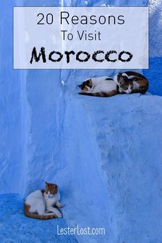 Travel | Morocco | M