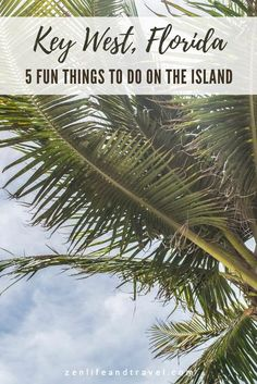 Key West, Florida is a fun destination known for a laid-back vibe, brightly colored houses, 6-toed cats, and water sports. These 5 fun things to do should not be missed while you're there.
