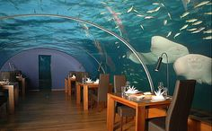 Hilton Hotel and Spa, Maldives.  Exclusive dining under water, with room for 14.  Heaven I'm In Heaven!
