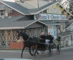 Ladies with horse and buggy