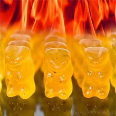 Evil Hot Gummi Bears are Habanero chilli-infused gummi bears.