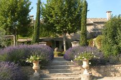 Villa Grenache | Luxury Hotel Menerbes | Photos - Bastide de Marie : luxury property with hotel services in Provence (France)