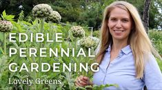 Edible Perennial Gardening - Plant Once, Harvest for Years Allotment Gardening, Gardening Tips, Growing Vegetables At Home, Self Watering, Edible Flowers, Edible Garden, Garden Inspiration, Garden Ideas, Shade Garden