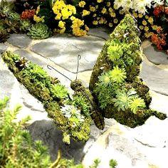 Butterfly with moss-growth as a garden-sculpture Schmetterling mit Moosbewuchs als Gartenskulptur Garden Crafts, Garden Projects, Unique Garden, Topiary Garden, Garden Whimsy, Deco Floral, Cacti And Succulents, Dream Garden, Yard Art