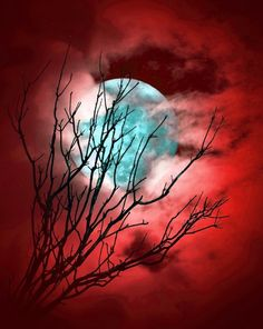 Blue moon in a crimson sky Moon Photos, Moon Pictures, Pretty Pictures, Moon Shadow, Shoot The Moon, Good Night Moon, Moon Magic, Moon Lovers, Beautiful Moon