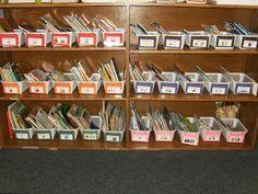 Holly's Hobbie: Kindergarten: Classroom Library Organization