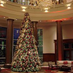 #c2mdesigns #decorus #christmastree #treelights #holidaydecor #gianttree #giantchristmastree #interiordecor #lobby #hotel #20fttree #omniprovidence #providence #rhodeisland #luxury #style #elegance #platinum #gold #red #glitter #bling #gobigorgohome #designsthatrock #scissorlift #rigger #likeC2MdesignsFacebook Designer: #christinemccaffery Specialty lighting: #ormondeproductions