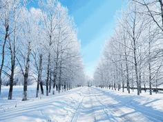 Why Winter Is The Best