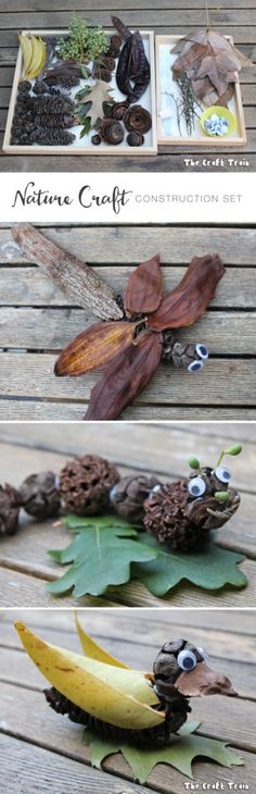 Create a nature craft construction kit using natural items plus blu-tack and googly eyes for fun natural activities with kids Diy Nature, Nature Crafts, Fall Crafts, Twig Crafts, Nature Study, Nature Activities, Craft Activities, Science Crafts, Art For Kids