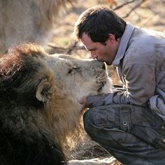 Kevin Richardson, animal behaviorist, with a wild lion. So sweet. I want a Lion! Kevin Richardson, Beautiful Cats, Animals Beautiful, Grand Chat, Animals And Pets, Cute Animals, Small Animals, Tier Fotos, All Gods Creatures
