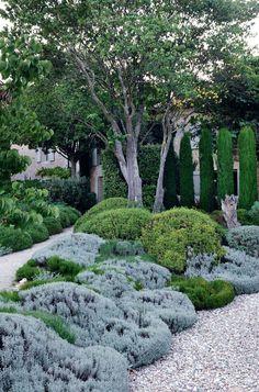 Nuances de vert dans le jardin pour une relaxation maximale