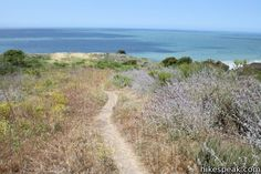 This 2.5-mile loop offers ocean and canyon views from a unspoiled section of the Santa Monica Mountains in Malibu.