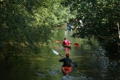Met de kano over de Westerwoldse Aa