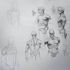 Pin by titan blu on comic heroes in 2019 anatomia, szkice, r Human Anatomy Drawing, Human Figure Drawing, Figure Sketching, Figure Drawing Reference, Guy Drawing, Drawing Poses, Art Reference Poses, Drawing Sketches, Art Drawings