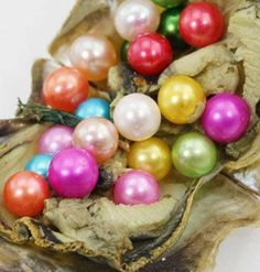 Little Rainbow Akoya Oysters have anywhere from 4 to 7, cultured,color enhanced pearls in them. Colors are completely random and/or mixed. The pearls are real..
