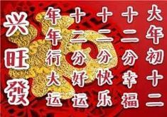 Chinese New Year Traditions, Chinese New Year Greeting, New Years Traditions, New Year Greetings, Advent Calendar, Traditional, Holiday Decor, Home Decor, Decoration Home