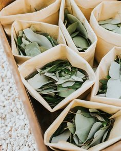 Slide Eucalyptus Toss eukalyptus, The Most Unique Ways to Use Eucalyptus Throughout Your Wedding Diy Wedding Wreath, Diy Your Wedding, Wedding Decorations, Wedding Centerpieces, Herb Centerpieces, Wedding Unique, Garland Wedding, Boho Wedding, Perfect Wedding