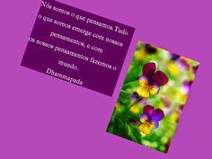 Mensagens-blog Entre Arte, Poesias e Cartões Flores e Belezas da natureza: Dhammapada- N55