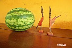 La foto del día: La danza de la sandía