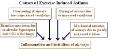 Asthma Symptoms -- Click image for more details. #AsthmaSymptoms