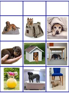 Sequencing Pictures, Greek Language, Montessori Toddler, Crafts For Kids, 1, English, School, Dogs, Animals