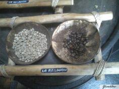 Le café Bourbon Pointu de lIle de la Réunion