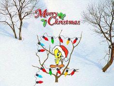 155 Best Tweety Images Looney Tunes Cartoons Drawing S