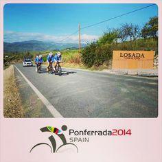 #roadbike #mundialdeciclismo2014 #ponferrada #bierzo #losada #redwine #godello #mencia #nibali
