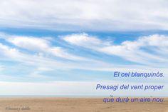 El cielo blanquezino. Presagio del viento futuro que traerá un aire nuevo.