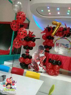 Lady Bug, Party, Ladybug, Miraculous Ladybug, Receptions, Parties, Ladybugs