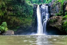 Tegenungan Waterfall is one of the many tourist attractions in Bali, it is popular with waterfall. Tegenungan waterfall lies at Tegenungan Village, Ubud Bali Ubud, Bali Tour Packages, Bali Waterfalls, Bali Yoga, Voyage Bali, Les Cascades, Nature Water, Paradise Island, Bali Travel