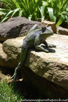Frog Sculpture in the Garden he's pretty cool