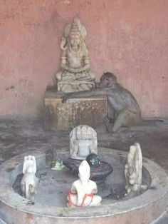 Maha means gretest and deva means divine being. Mahadeva is God Siva and his divine Shiva Shambo, State Of Decay, Om Namah Shivaya, Hinduism, Incredible India, The Incredibles, Community, Culture, History