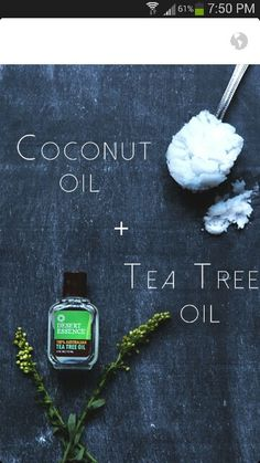 When these two oils are combined, it produces a serum that will help reduce redness in rashes and acne. The antiseptic properties will help to treat and prevent blemishes that appear on the face. Mix a few drops of tea tree oil to a spoonful of coconut oil and combine until a clear serum has formed. Spread evenly on the face before bed and wash off in the morning!
