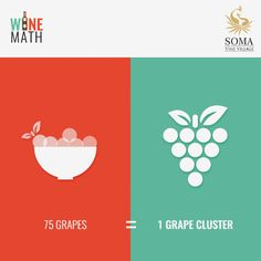 Wine Math-1