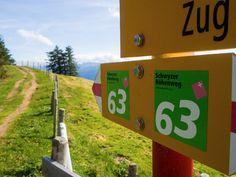 Von Goldau nach Sattel bin ich auf einer abwechslungsreichen Wanderung auf der dritten Etappe des Schwyzer Höhenweg unterwegs. Advent, Der Bus, Cowbell, Flims