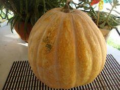 ΜΑΓΕΙΡΙΚΗ ΚΑΙ ΣΥΝΤΑΓΕΣ: κολοκύθα γλυκό κουταλιού με αρίδα και όχι μόνο! Pumpkin, Baking, Vegetables, Recipes, Food, Plants, Pumpkins, Bakken, Recipies