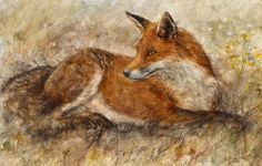 Red Fox Waiting by Gary Benfield £375