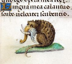 Elephant rat, 'Hours of Joanna the Mad', Bruges 1486-1506 (BL, Add 18852, fol. 203r) @BLMedieval