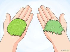 Grow Moss Step 1 Version 2.jpg