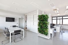 Located in Hawaii, we provide customized sustainable living plant wall design & systems. Our custom green wall systems bring the beauty of plants to your space. Easy Garden, Wall Design, Green Roof Design, Wall Climbing Plants, Beautiful Wall, Indoor, Sustainable Living, Vertical Garden Systems, Home Decor