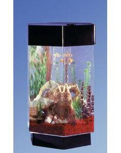 Tucker Murphy™ Pet Alan 20 Gallon Tower Square Aquarium Tank | Wayfair Bags Of Gravel, 20 Gallon Aquarium, Biorb, Undersea World, Artificial Plants, Sculptures, Tower, Light Fixture, Products